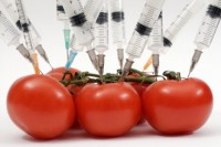 Genetic Modified (GM) Food/Organisms